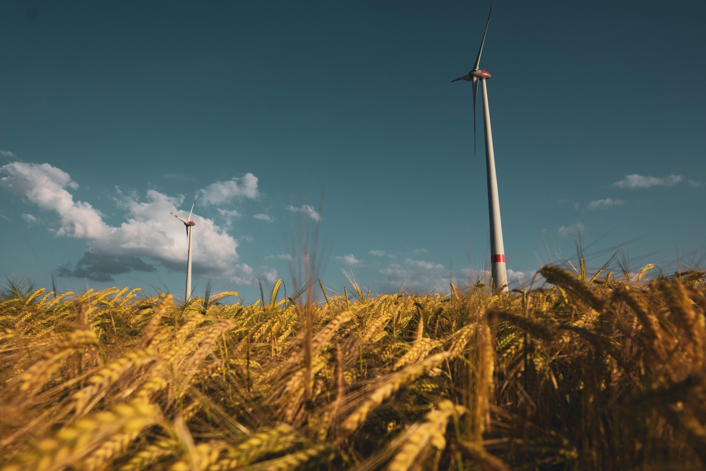スマートコミュニティの実現による環境に優しい未来