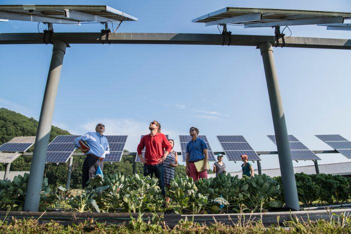 地域活性化と環境保護を実現するエネルギー自治が普及するためには
