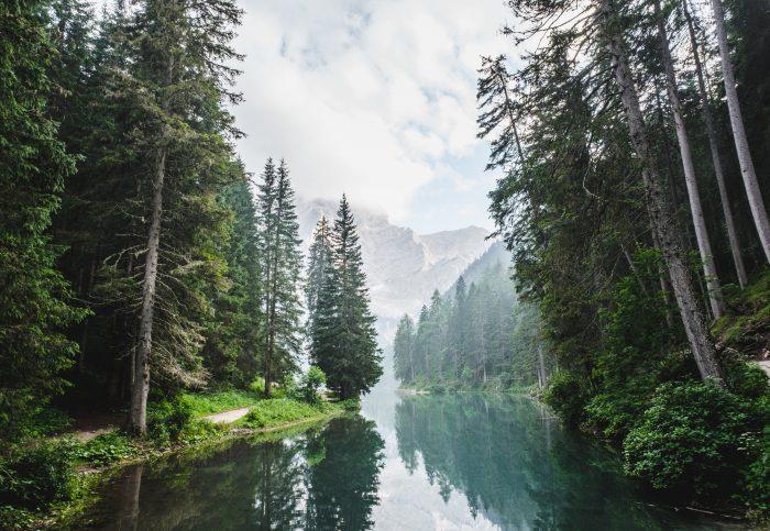 C.W.ニコルさんの人生に学ぶ 自然への敬意と不屈の精神、そして自ら行動することの大切さ