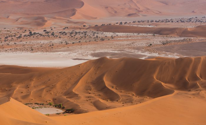 世界で広がりゆく砂漠化の原因とは 地球温暖化との関係を知り土地再生に取り組もう