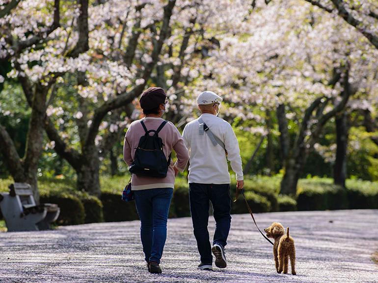 世界中で運動不足が深刻化 ロコモティブシンドローム予防と環境のため「歩く」を始めよう